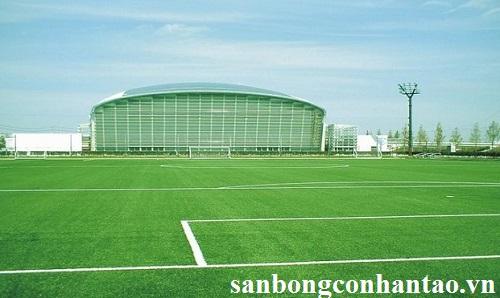 bán cỏ nhân tạo sân bóng đá