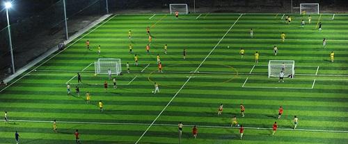 cỏ nhân tạo sân bóng đá