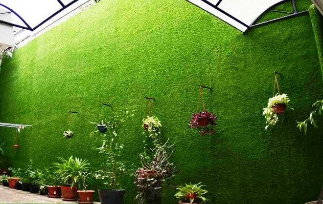 cỏ nhân tạo trang trí-2