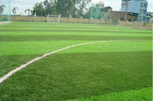 mẫu sân bóng cỏ nhân tạo 4