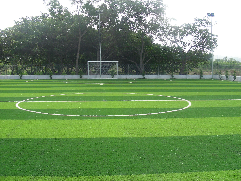mẫu sân bóng cỏ nhân tạo 3