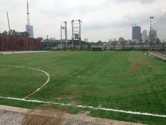 thi công sân cỏ nhân tạo lê văn lương