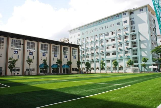 Lựa chọn cỏ nhân tạo và đơn vị thi công sân cỏ nhân tạo