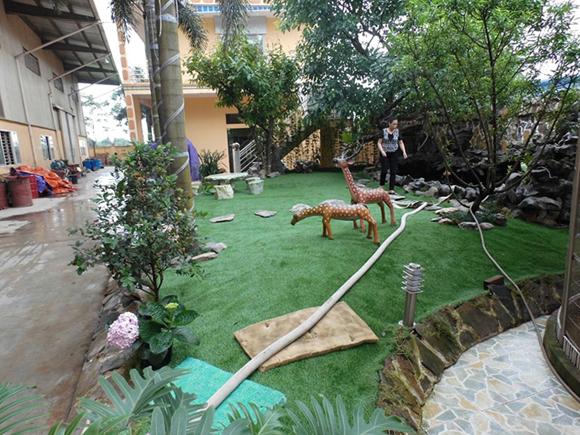 cỏ nhân tạo sân vườn 5
