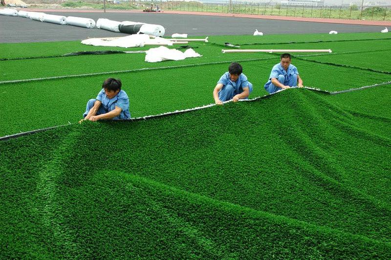 cung cấp cỏ nhân tạo 2
