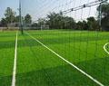 Sân bóng cỏ nhân tạo và những vấn đề thường gặp