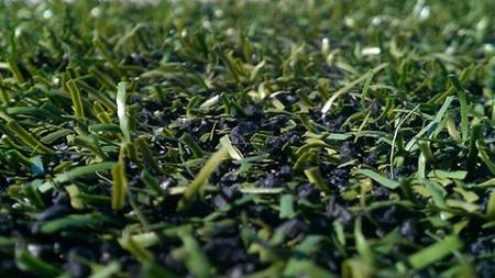 Vui chơi trên sân cỏ có thực sự an toàn