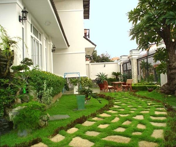 Bán cỏ nhân tạo dải nền sân vườn đạt tiêu chuẩn quốc tế