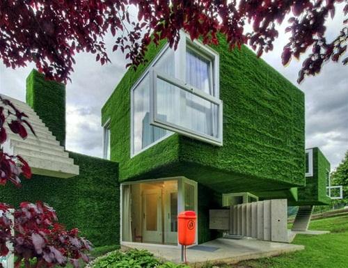 Phủ xanh tường bằng cỏ nhân tạo trang trí