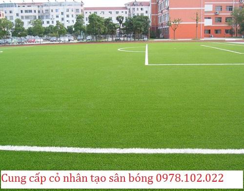 Địa chỉ cung cấp cỏ nhân tạo bền đẹp cho sân bóng