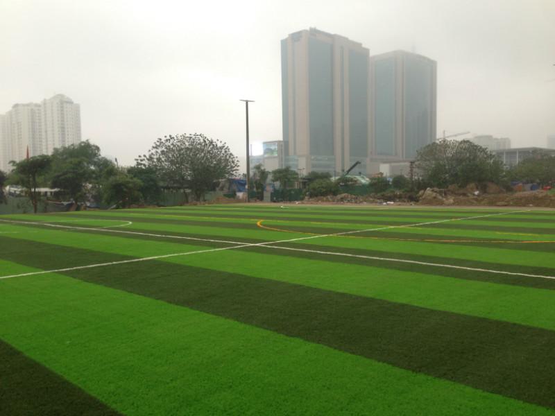 Ưu điểm vượt trội của cỏ nhân tạo so với cỏ tự nhiên