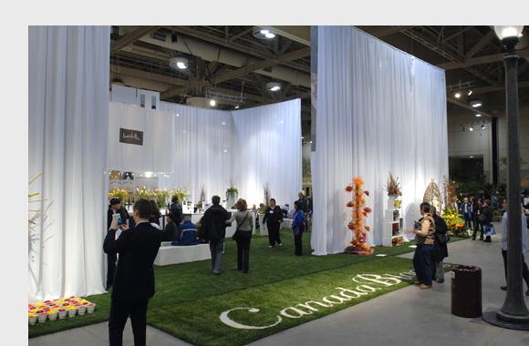Ứng dụng cỏ nhân tạo cho các dịp khai trương, triển lãm