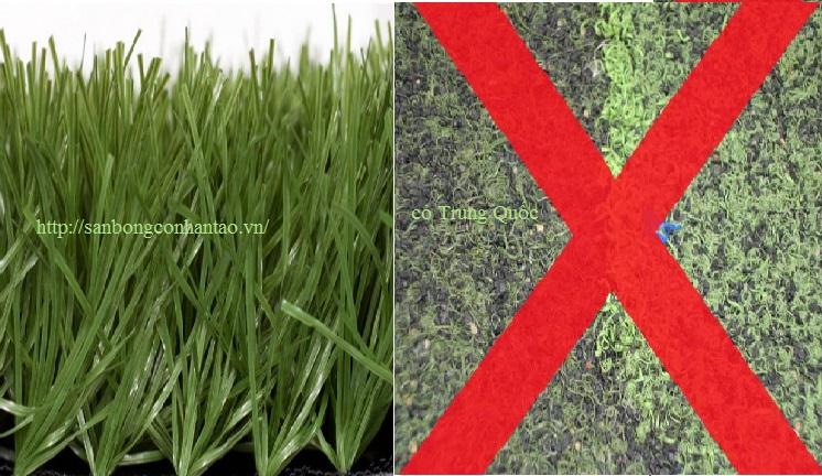 Cách chọn, đánh giá nơi thi công sân cỏ nhân tạo