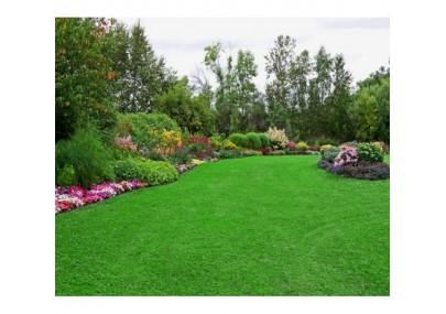 Cỏ nhân tạo sân vườn PTN02