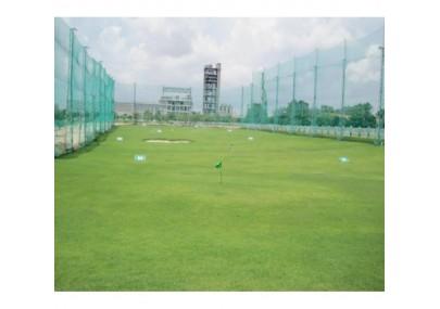 Cỏ nhân tạo sân golf PTN01