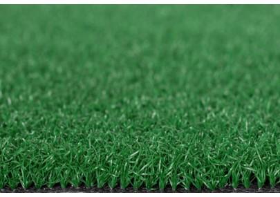 Cỏ nhân tạo sân golf PTN06