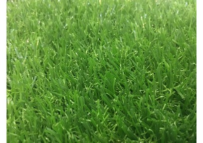 Thảm cỏ nhân tạo PTN-TG20