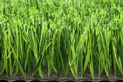 Chỉ số Dtex nói gì về cỏ nhân tạo?