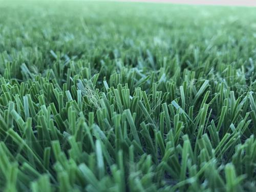 Cung cấp cỏ nhân tạo tại Đà Nẵng