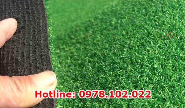 Cung cấp và thi công cỏ nhân tạo tại Nam Định