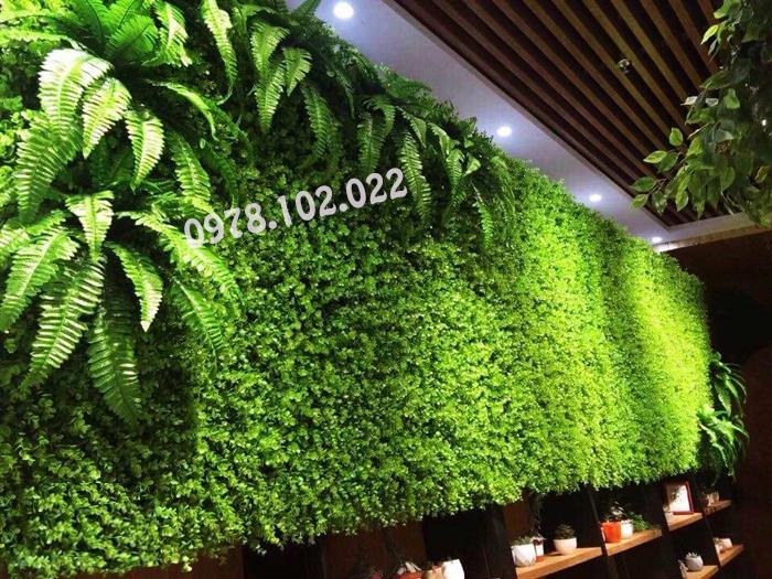 Cung cấp, thi công thảm cỏ nhựa nhân tạo giá rẻ, chất lượng