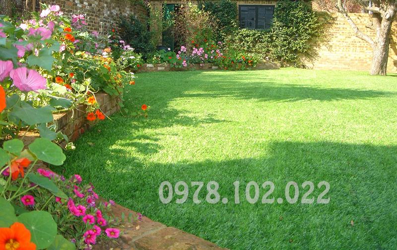 Tác dụng của hạt cao su cỏ nhân tạo