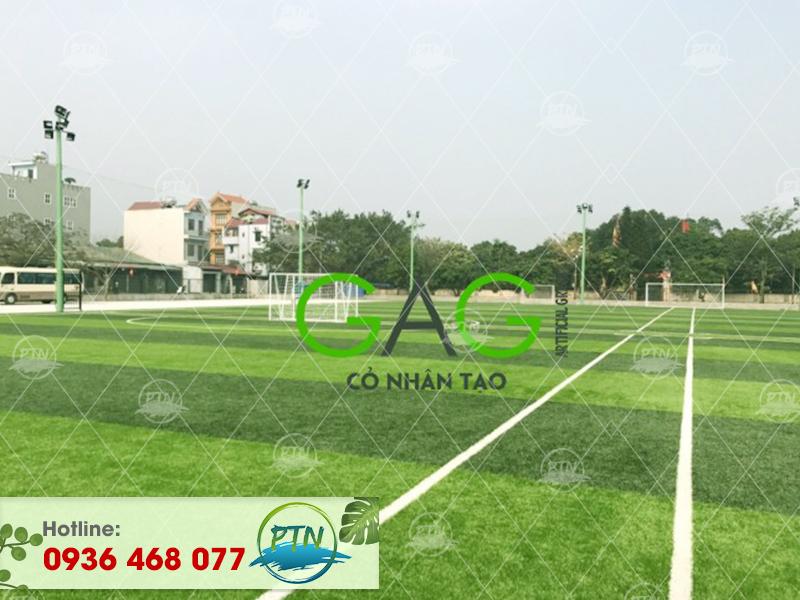Dự án thi công sân cỏ nhân tạo tại Hồ Chí Minh