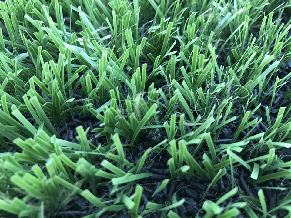 cung cấp các loại cỏ nhân tạo toàn quốc