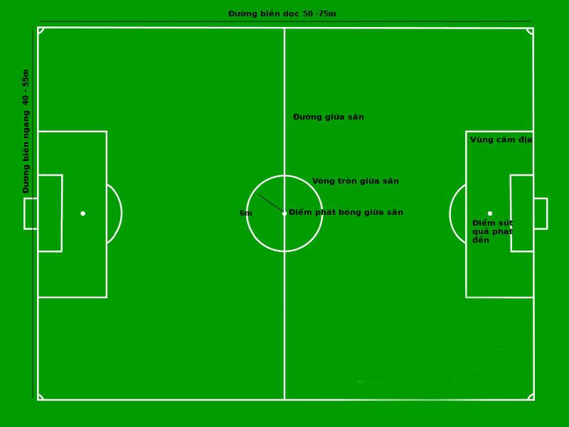 Kích thước sân bóng đá cỏ nhân tạo 7 người theo tiêu chuẩn FIFA