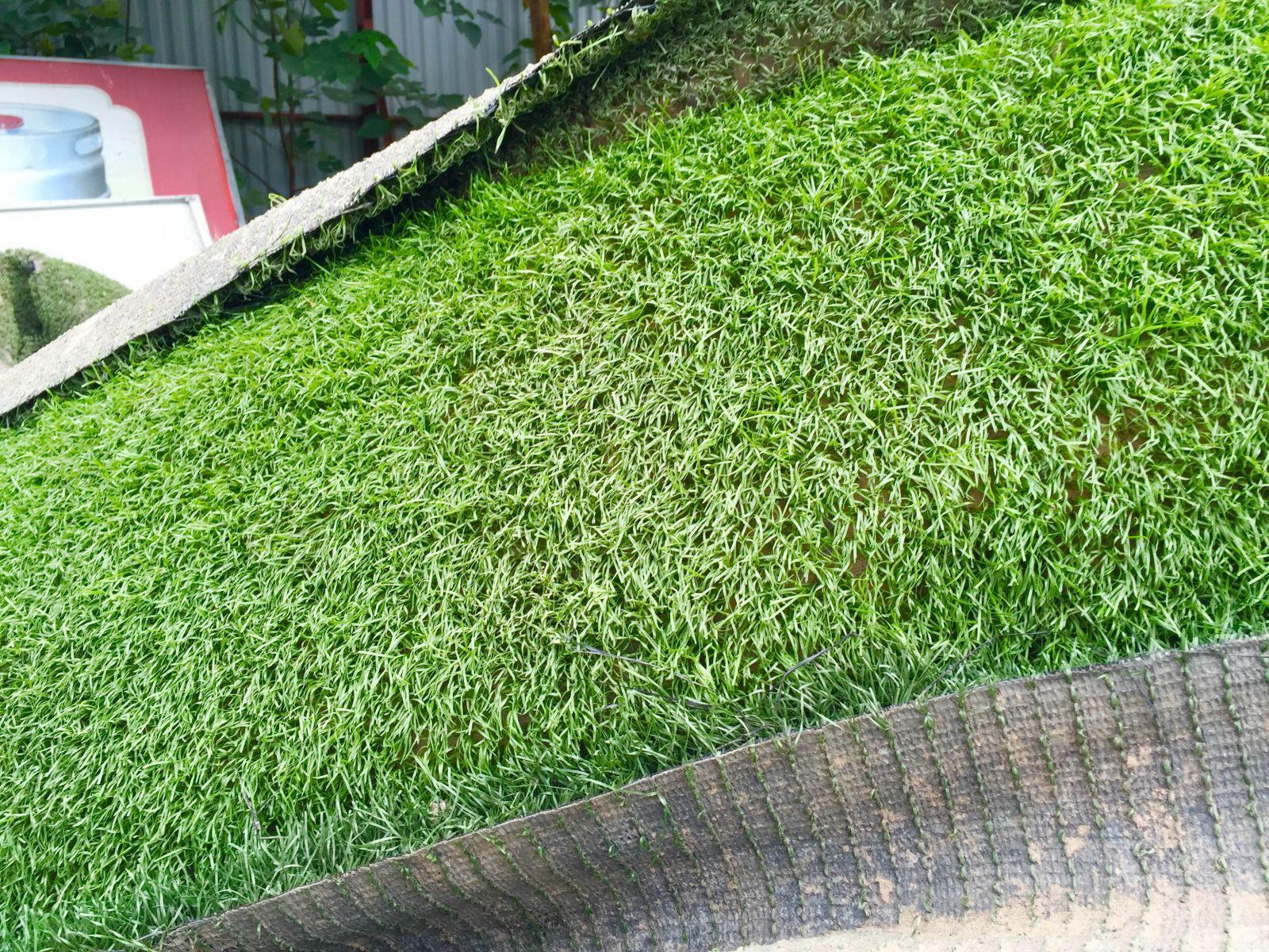 thảm cỏ nhân tạo thanh lý giá rẻ