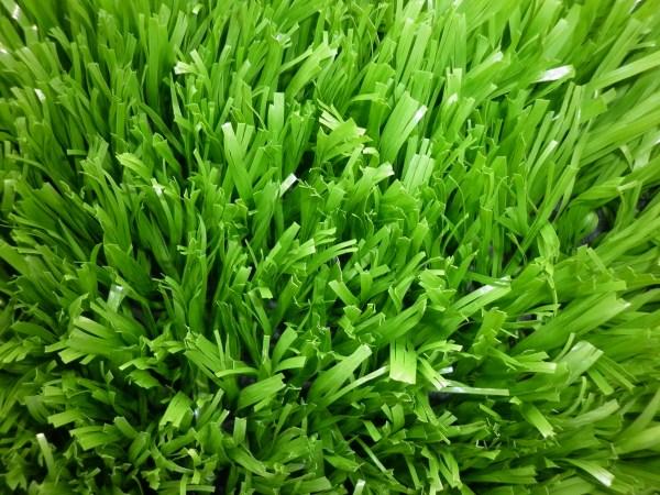 Thảm cỏ nhân tạo chính hãng do Công ty Cao Nguyễn cung cấp, bán