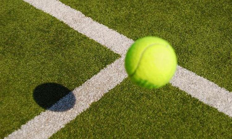 cỏ nhân tạo sân tennis hình ảnh thực tế