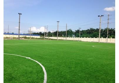 Thi công Sân bóng cỏ nhân tạo Thăng Long – Phố Nối – Hưng Yên